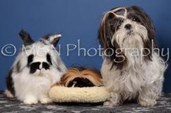 M&N Photography -DSC_5346