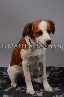 M&N Photography -DSC_1509