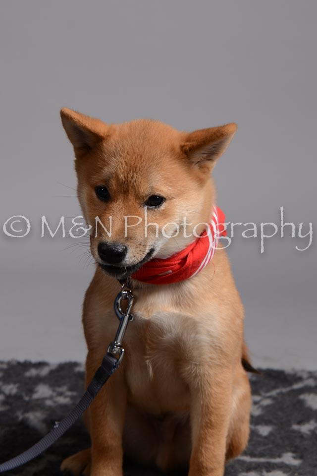 M&N Photography -DSC_2582