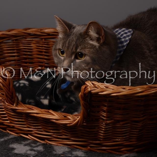 M&N Photography -DSC_2100