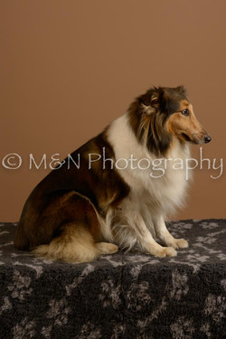 M&N Photography -_SNB0726