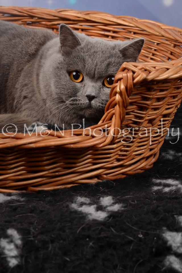 M&N Photography -DSC_6839