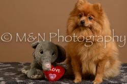 M&N Photography -_SNB0895
