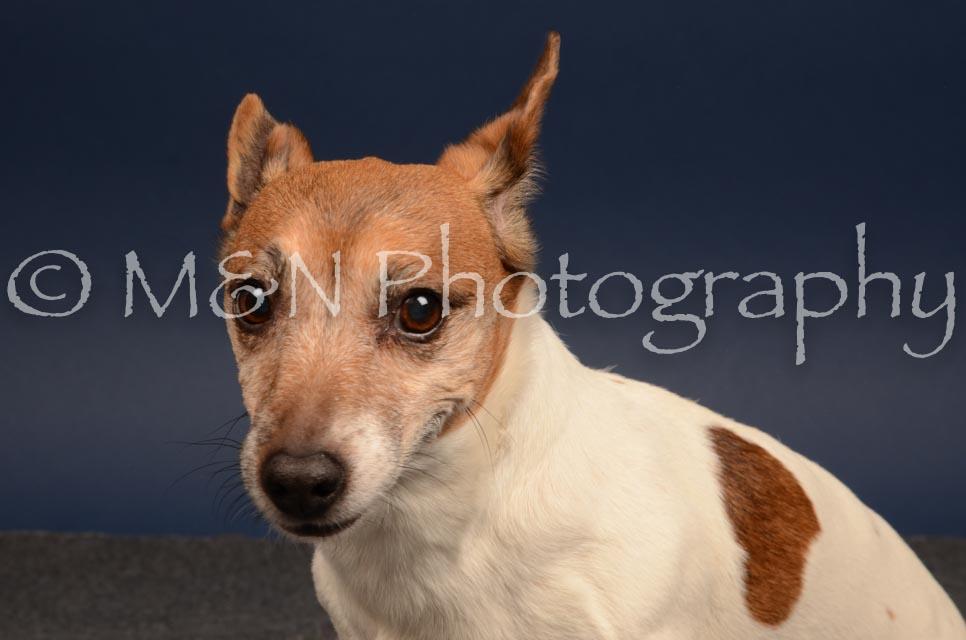 M&N Photography -DSC_4587