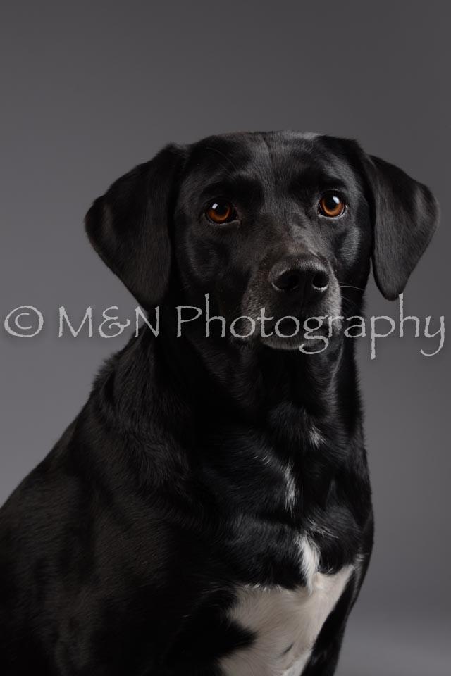 M&N Photography -DSC_2027
