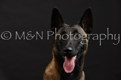 M&N Photography -DSC_2731