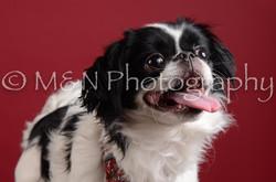 M&N Photography -DSC_3024
