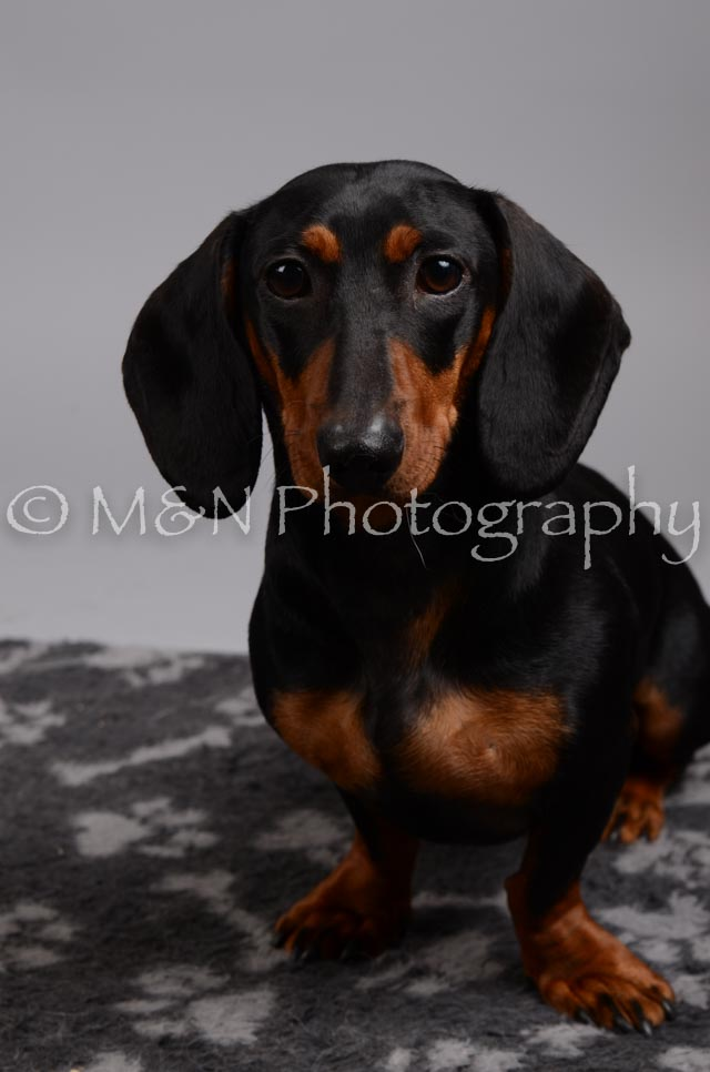M&N Photography -DSC_2860