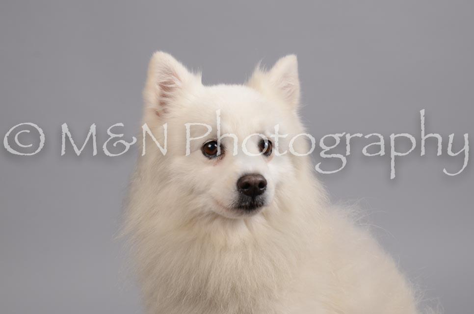 M&N Photography -DSC_2766