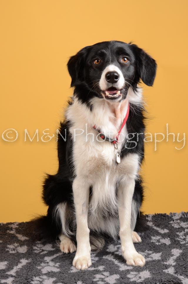 M&N Photography -DSC_4508