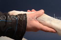 M&N Photography -DSC_4393