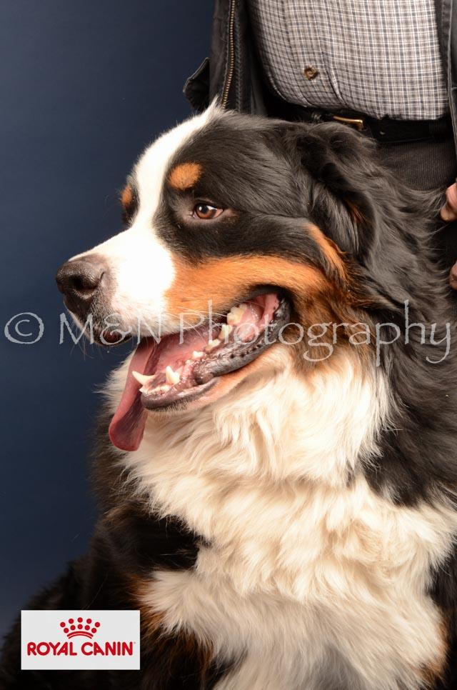 M&N Photography -DSC_4209-2