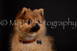 M&N Photography -DSC_5680