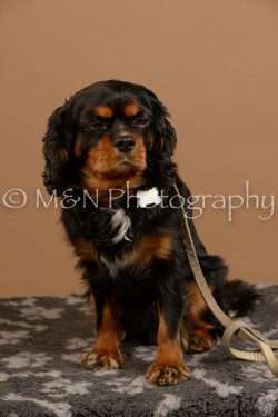 M&N Photography -_SNB0925