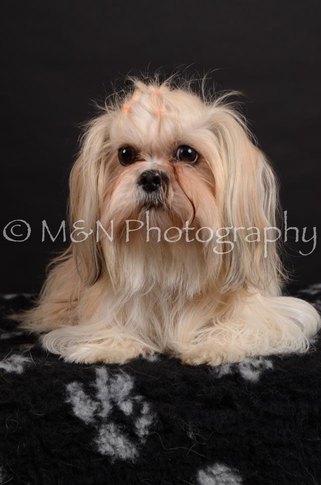 M&N Photography -DSC_5721