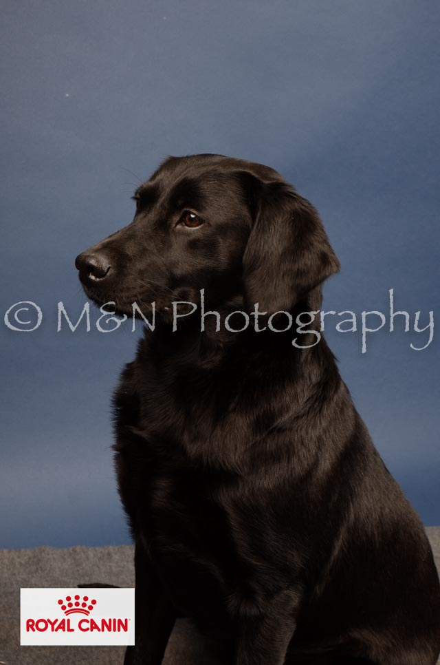 M&N Photography -DSC_4335-2