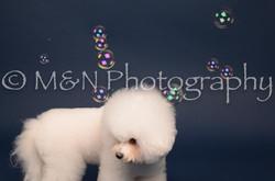 M&N Photography -DSC_3897