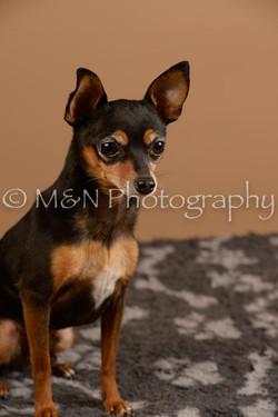 M&N Photography -_SNB0555