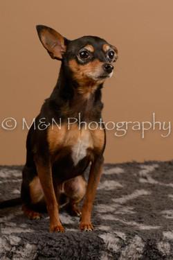 M&N Photography -_SNB0551