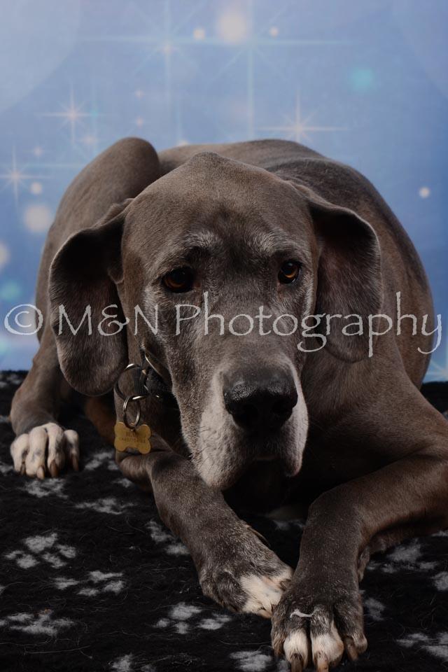 M&N Photography -DSC_6754