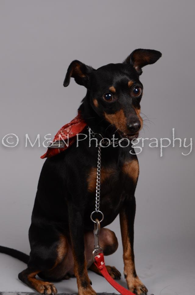 M&N Photography -DSC_2803