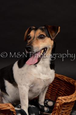 M&N Photography -DSC_0047