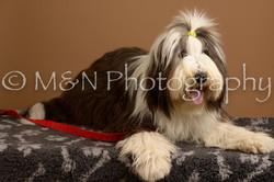 M&N Photography -_SNB0600