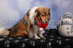 M&N Photography -DSC_6939