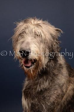 M&N Photography -DSC_4438