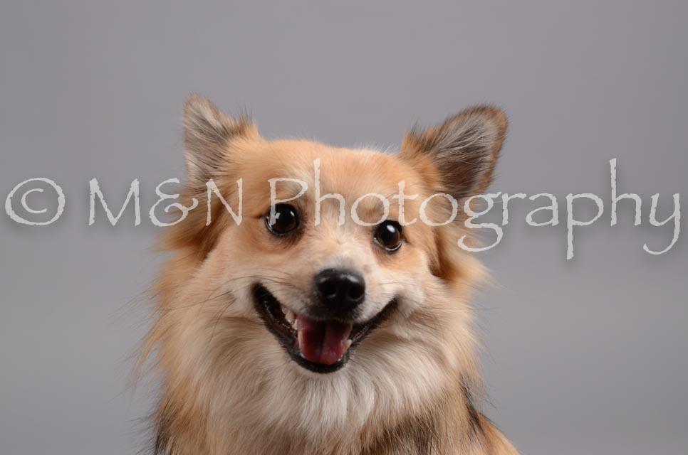 M&N Photography -DSC_2722
