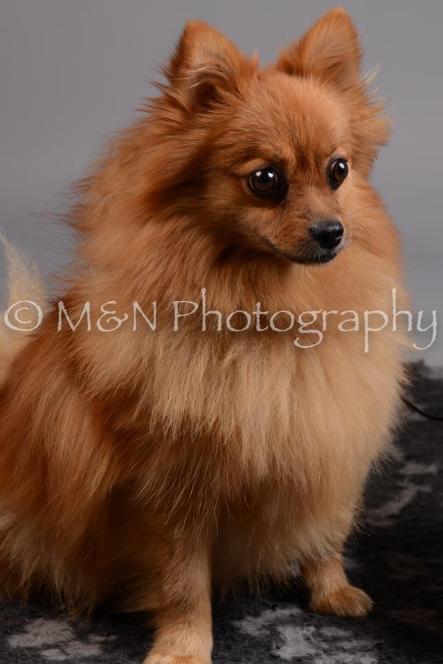 M&N Photography -DSC_2521