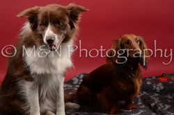 M&N Photography -DSC_8538