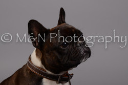 M&N Photography -DSC_2570