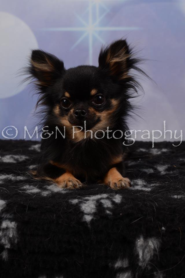 M&N Photography -DSC_6786