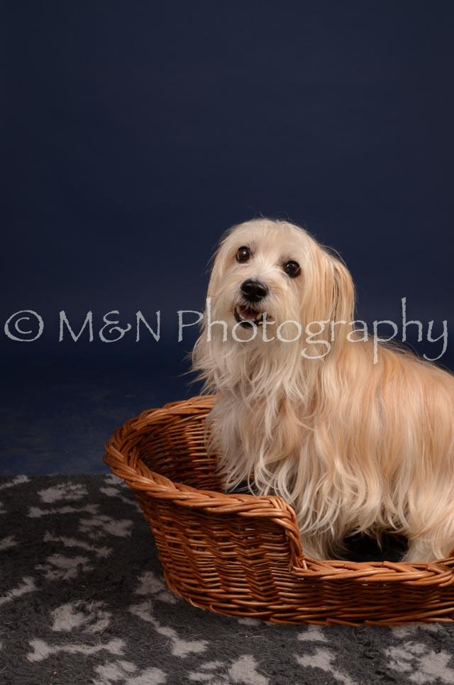M&N Photography -DSC_0818