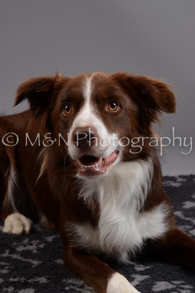 M&N Photography -DSC_1458