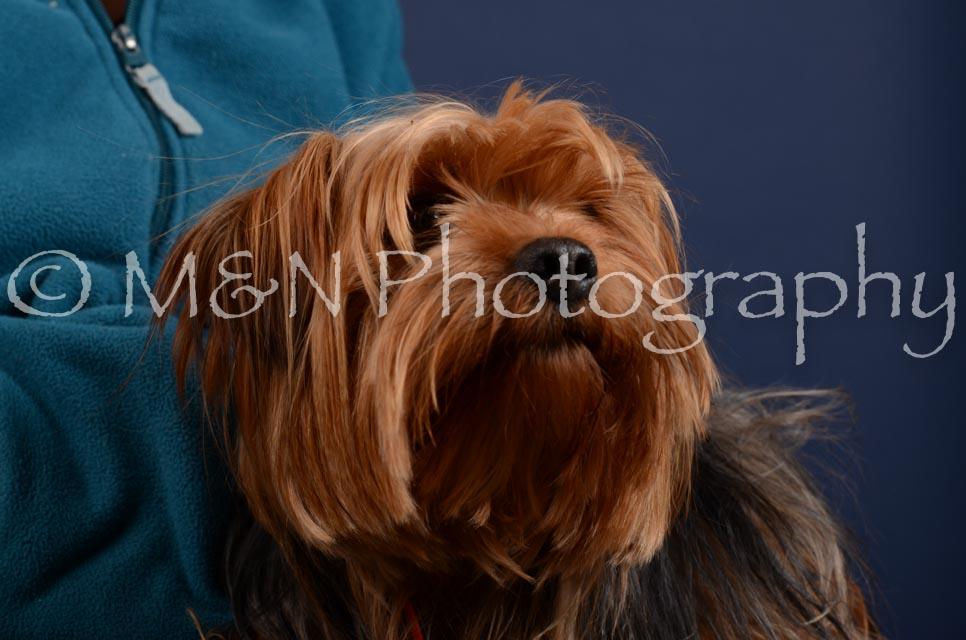 M&N Photography -DSC_4178