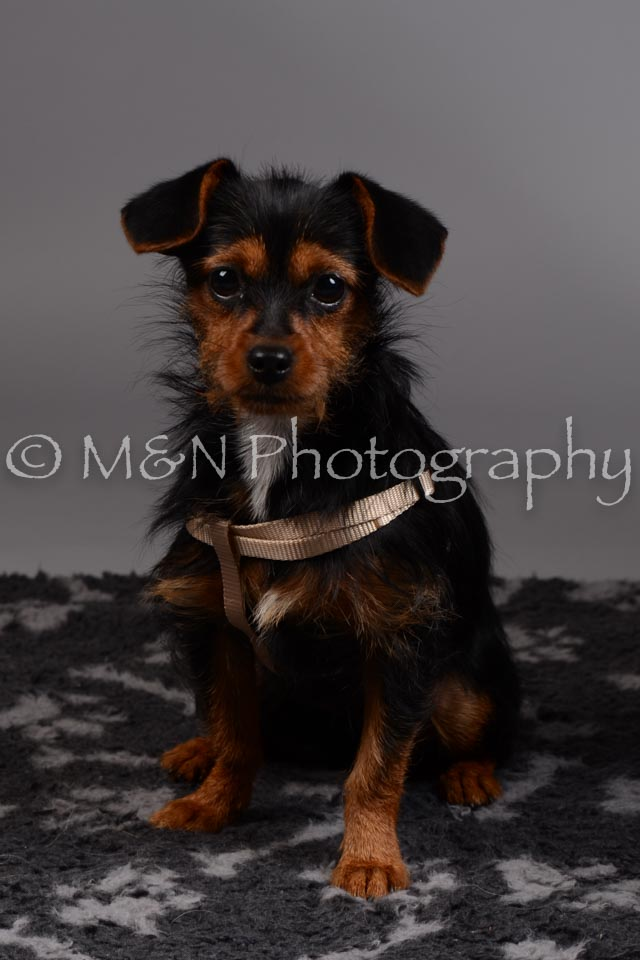 M&N Photography -DSC_1496