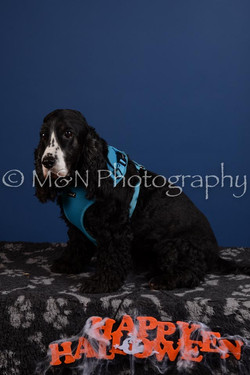 M&N Photography -DSC_5099