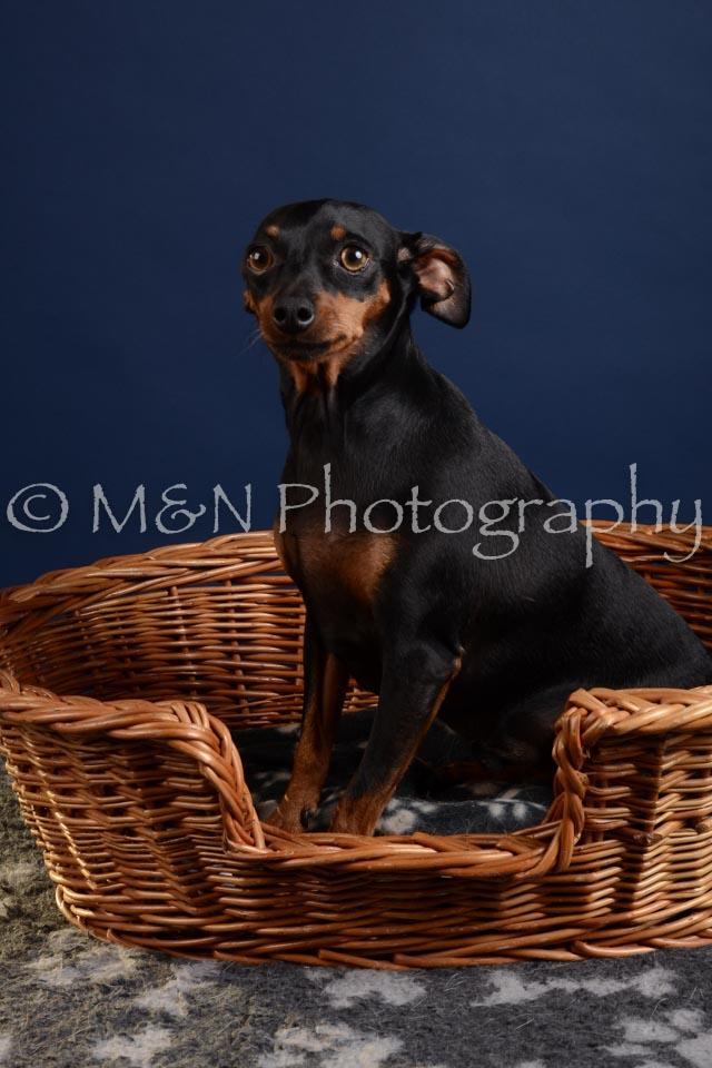 M&N Photography -DSC_3815