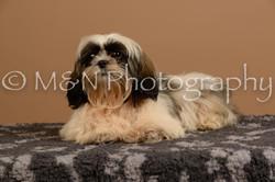 M&N Photography -_SNB0492