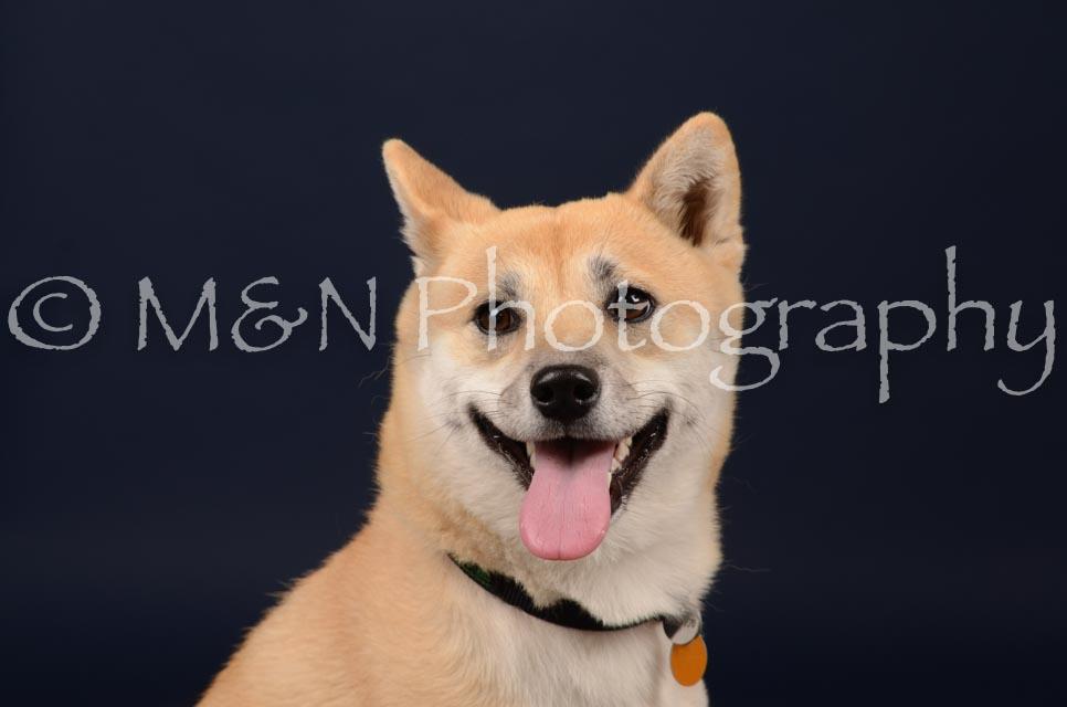 M&N Photography -DSC_0672