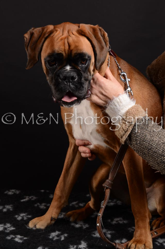 M&N Photography -DSC_5917