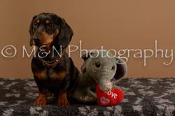 M&N Photography -_SNB0541