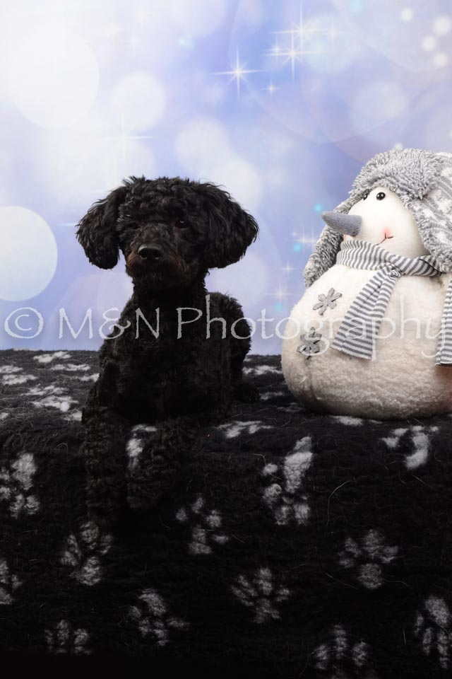 M&N Photography -DSC_6876