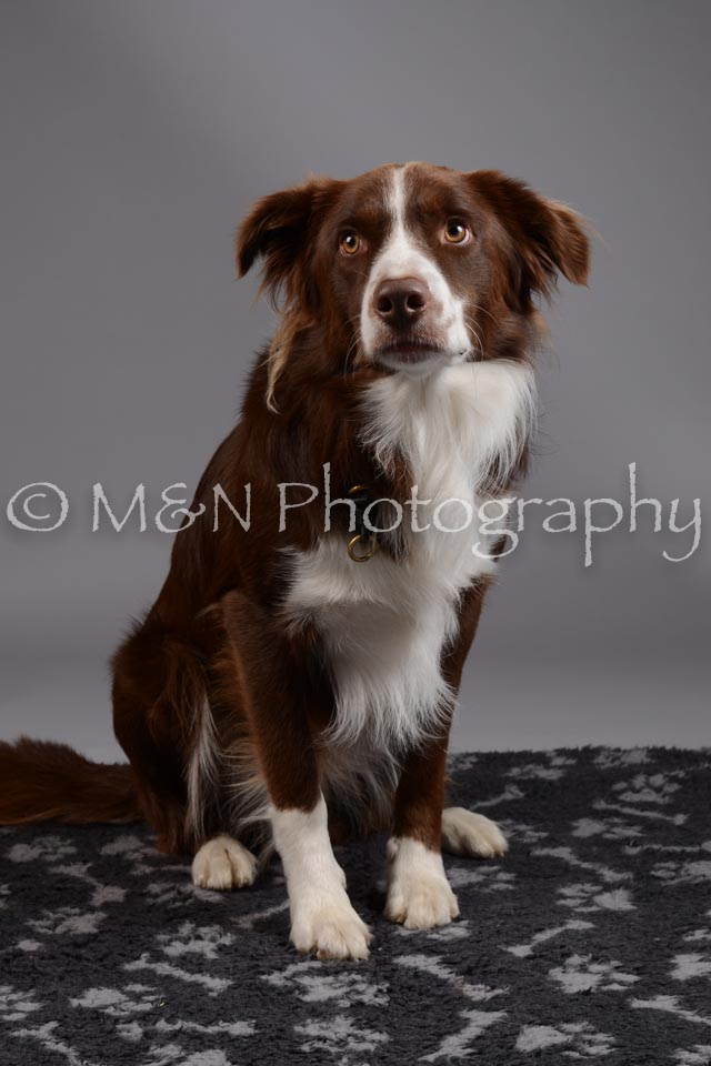 M&N Photography -DSC_1459