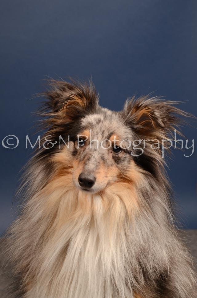 M&N Photography -DSC_4451