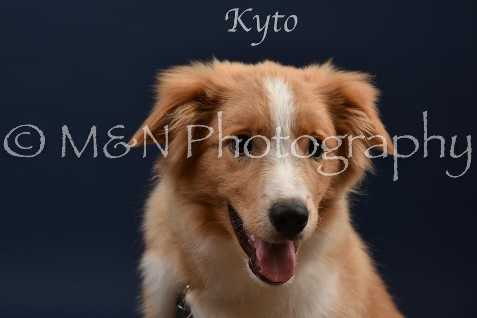 018 - Kyto -DSC_1865