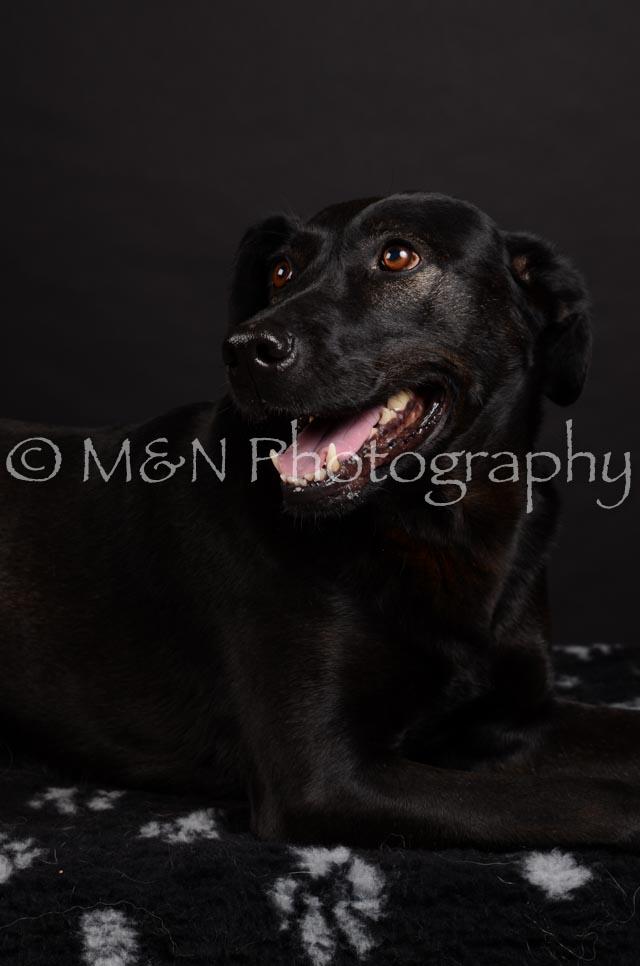 M&N Photography -DSC_5786