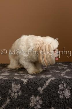 M&N Photography -_SNB0762